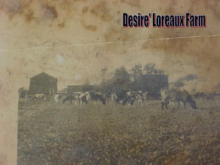 desire loreaux farm bd